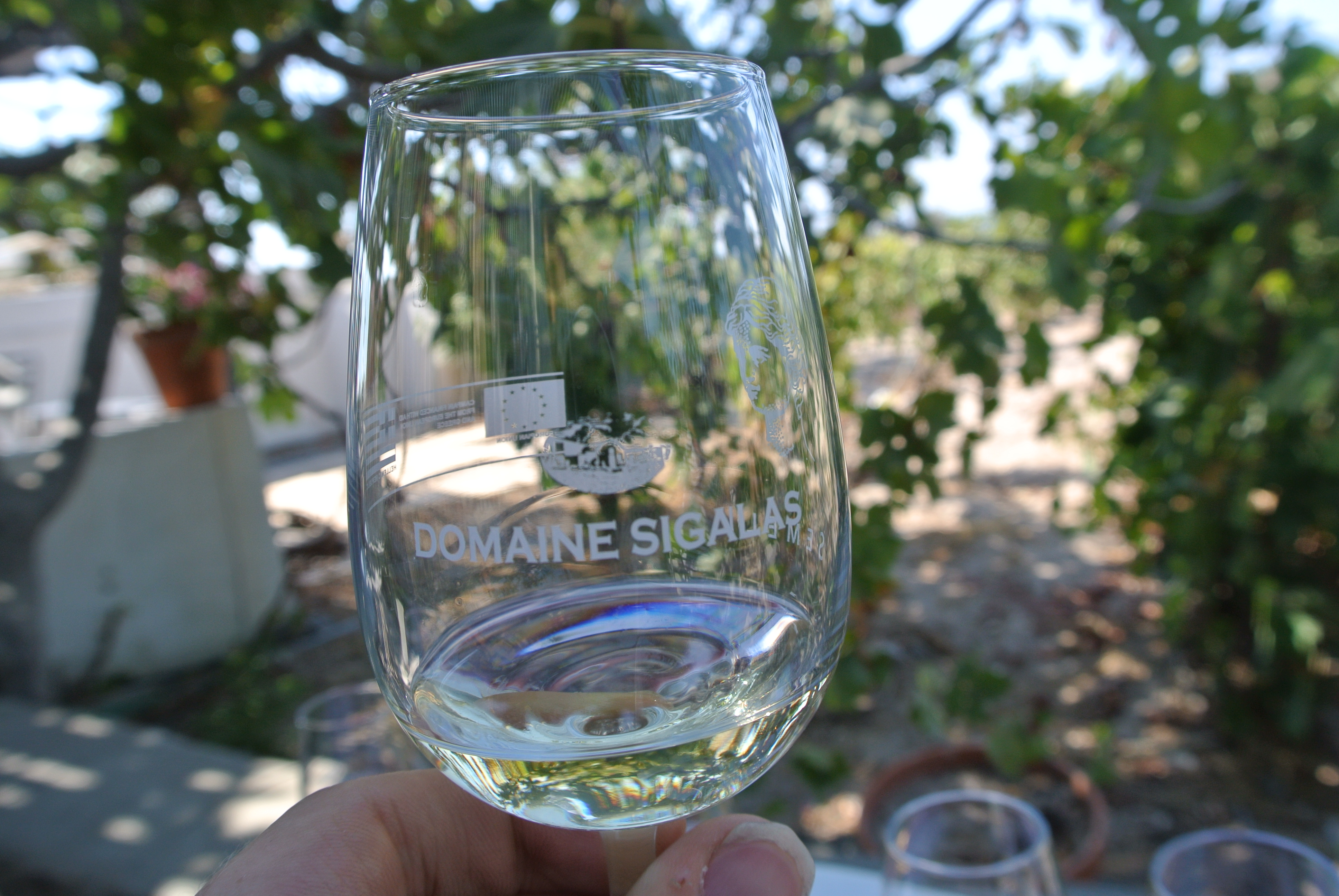 Wine Tour dsc 35491